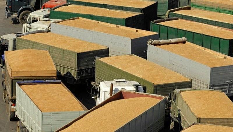 Зерновики и правительство договорились о лимите на экспорт пшеницы из Украины