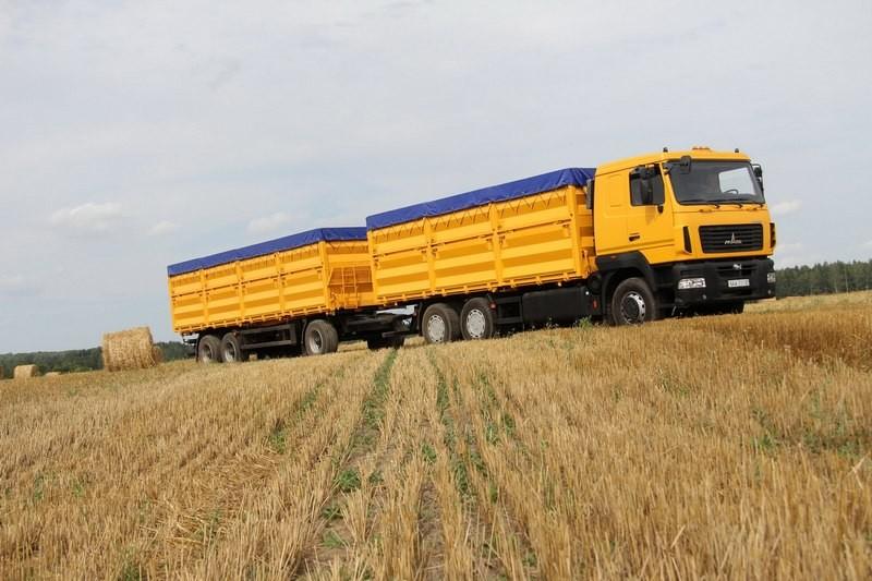 До 2040 года Украина будет одной из самых благоприятных стран для выращивания пшеницы – эксперт ООН