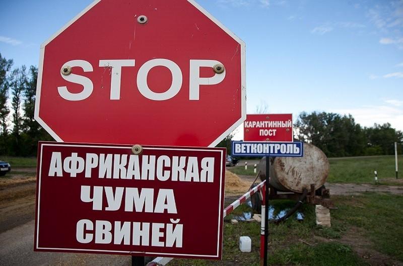На ферме в Доманёвском районе Николаевской области зафиксировали АЧС