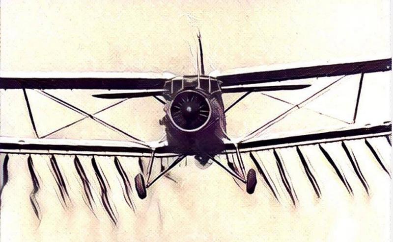 «Кукурузник» Ан-2 попал в Книгу Гиннеса как единственная авиамашина, выпускающаяся более 60 лет