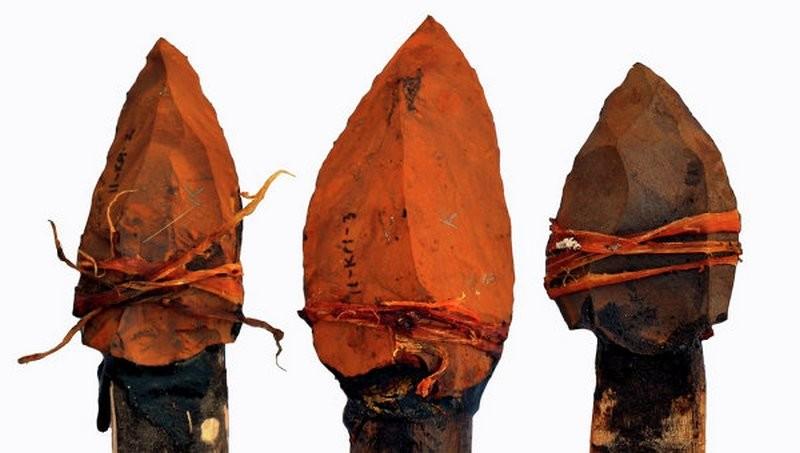 Музей под Ярославлем наказали за древние наконечники копий – не было разрешения на оружие