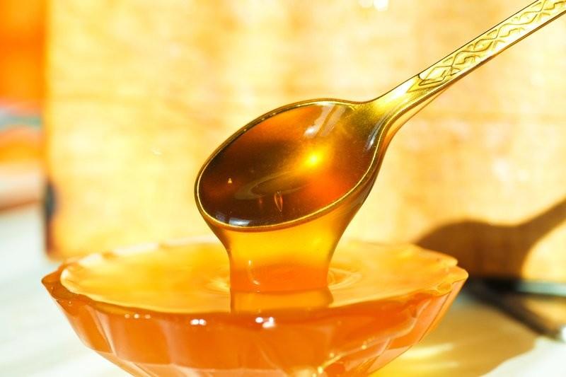 Украина поставила абсолютной рекорд по экспорту меда