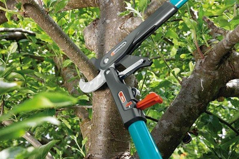 Секатор для обрезки высоких деревьев