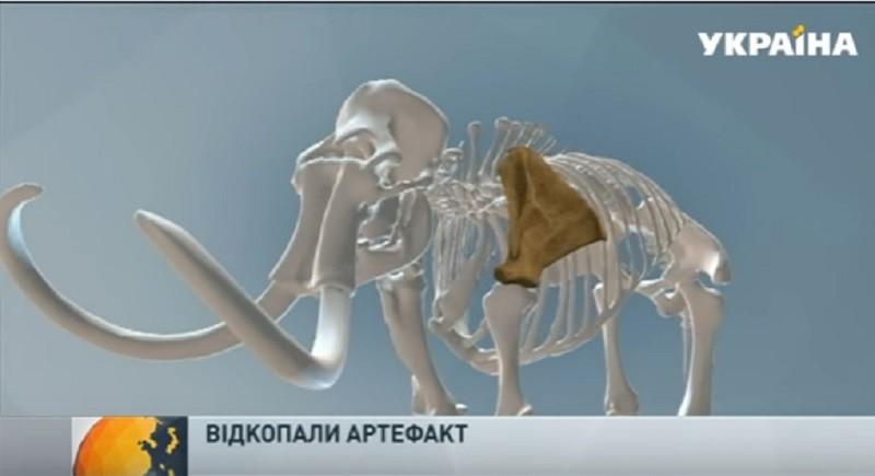 Случайная находка: в Николаеве обнаружилась лопатка мамонта