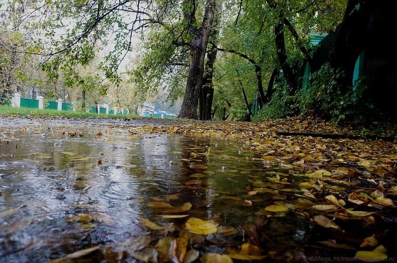 Ветер и осадки усилятся, а температура «подрастет» – такой будет погода в Украине в ближайшие дни