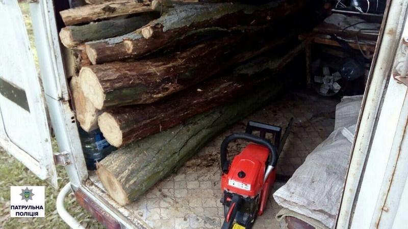 «Все вокруг народное, все вокруг мое?»: в урочище в Корабельном районе Николаева мужчина пилил деревья
