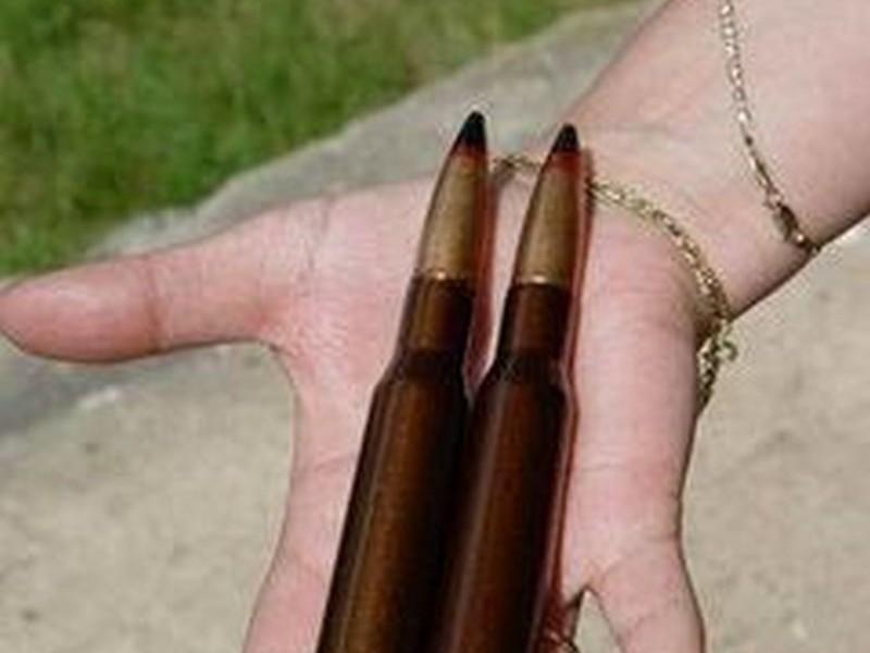 В Кривоозерском районе мужчина нашел 6 крупнокалиберных пулеметных патронов