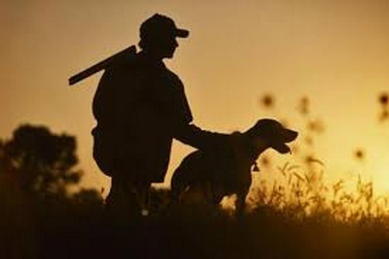 Окупаемость ведения охотничьего хозяйства в прошлом году в Николаевской области выросла на 10%