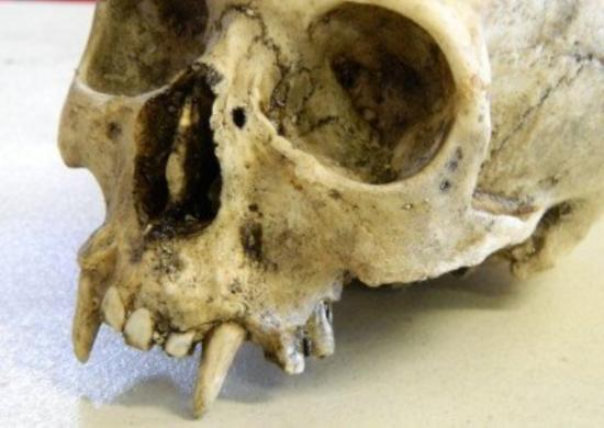 Страшно, аж жуть. В Польше отрыли древние могилы вурдалаков – XIII – XIV веков
