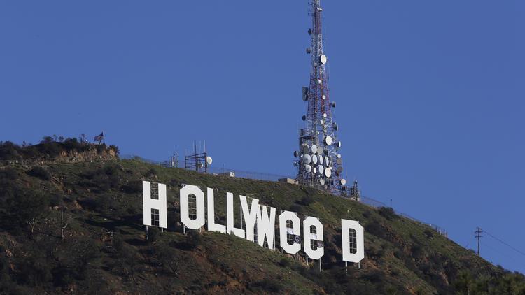 По следам шутки: превративший надпись «Голливуд» в «святую марихуану» был арестован, а потом вышел под залог