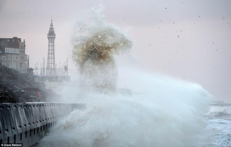 Великобритании прогнозируют зимний шторм: ветер уже успел натворить дел – валил деревья, угрожал самолетам и авто