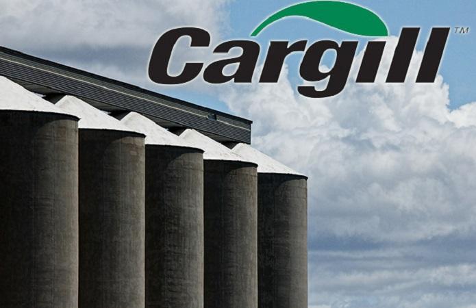 Карго обвиняет АМПУ. Строительство зернового терминала Cargill в Южном под угрозой срыва