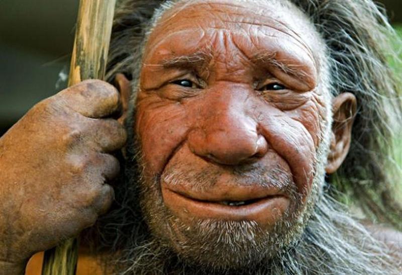 Доисторические наскальные рисунки в Испании доказывают, что неандертальцы были художниками