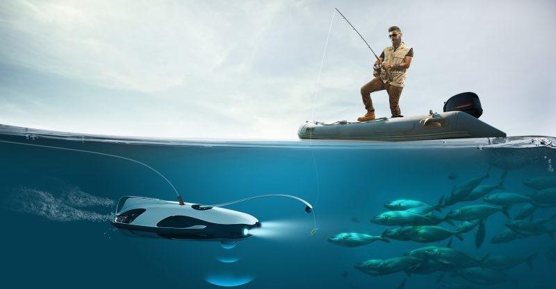 Черноморский рыбоохранный патруль приостановил выдачу научным учреждениям разрешений на проведение лова в научных целях в Черном море
