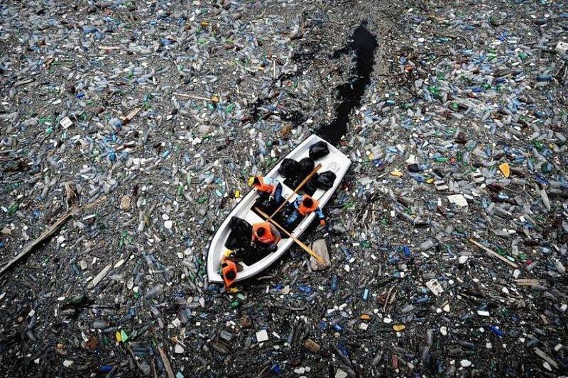 6 фактов, как мы ежедневно уничтожаем нашу планету