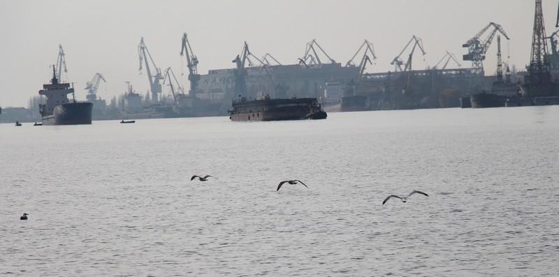 Николаевский порт по итогам 7 месяцев вышел на второе место по грузоперевалке