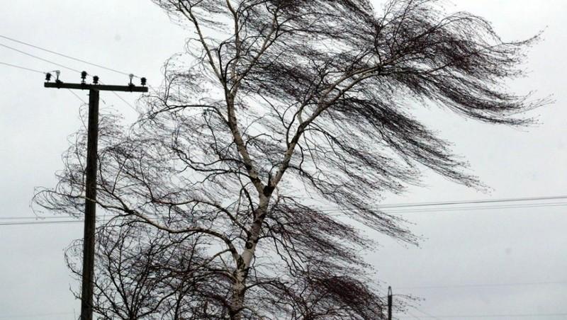 Штормовой ветер: погода покажет характер в Николаеве