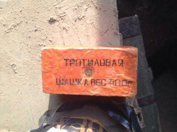 Житель Витовского района «случайно» привез с Востока страны тротиловую шашку