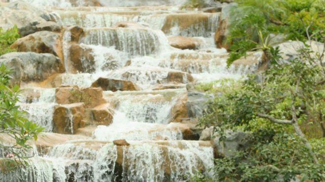 В Гане у водопада на туристов упало дерево. Погибло 20 человек