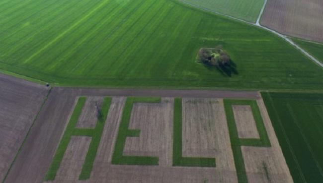 У фермеров в Европе тоже проблемы. Француз на поле вырастил послание отчаяния