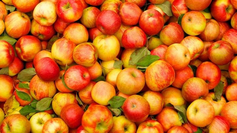 Супрун опровергла миф о яблоках