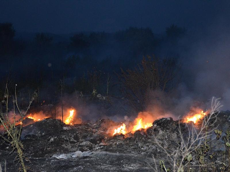 В Николаеве горящую свалку тушили почти 2 часа – площадь пожара составила 600 кв. м