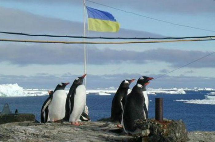 Украина и Беларусь будут совместно исследовать Антарктику