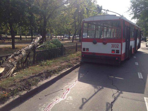 В Николаеве пенсионера сбил троллейбус. Насмерть