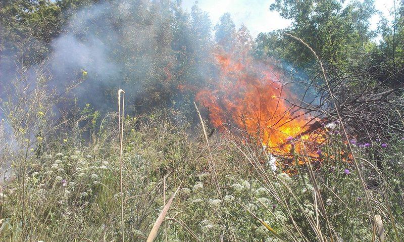 В Большой Коренихе вчера тушили сухую траву на площади в почти 5 га. И это не единственный пожар на Николаевщине в экосистеме