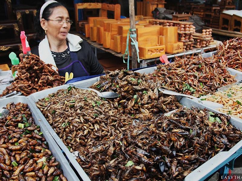 Жуки, сверчки, гусеницы. Люди едят около 2 тыс. видов насекомых