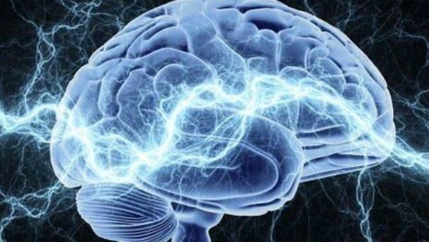 """В мозгу нашли """"кнопку"""", которая выключает алкогольную зависимость"""
