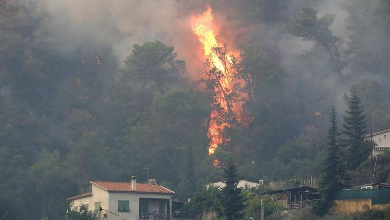 На юге Франции из-за лесных пожаров эвакуировали 10 тыс человек