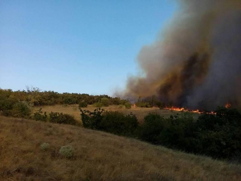 В Николаевской области горит лесное урочище: 15 га – по низу, 3 га – по верху