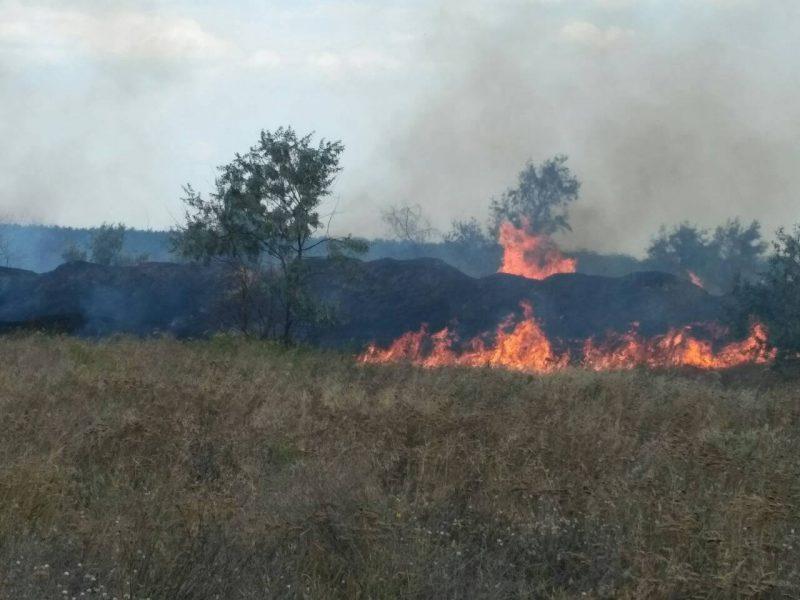 Снова горим! В Витовской районе Николаевщины спасатели тушат сухую траву на значительной площади. Жилые дома «отбить» удалось