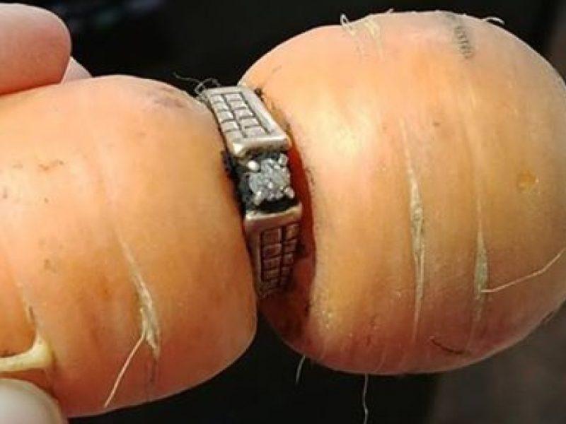 В Канаде к женщине вернулось давно потерянное кольцо – сквозь него проросла морковь