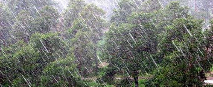 По Николаеву и области передали штормовое предупреждение – обещают грозу и шквалы