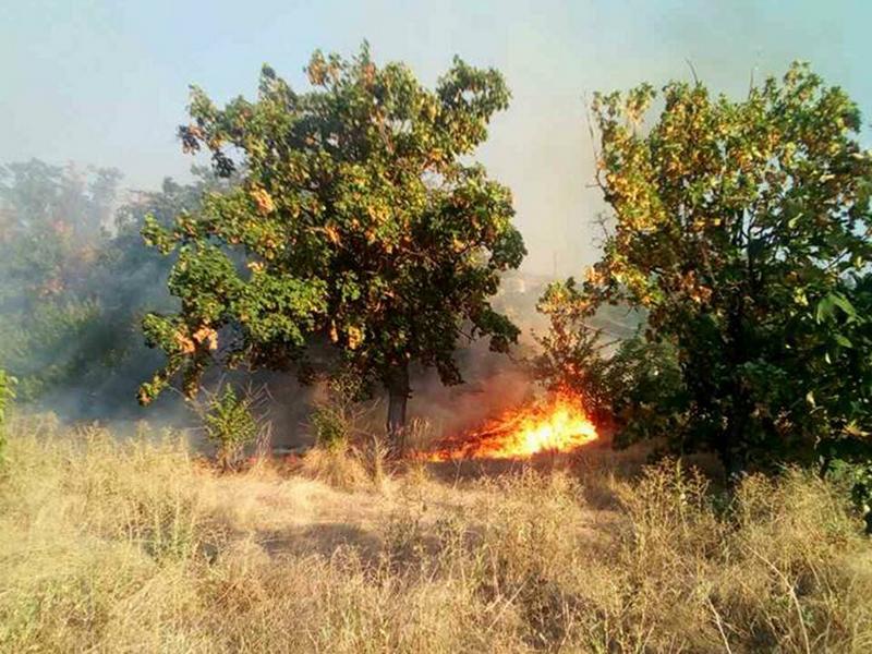 За сутки на Николаевщине спасатели 17 раз выезжали на тушение пожаров