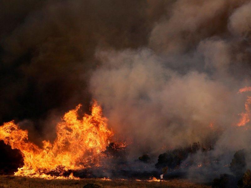 Пожар на заводе фейерверков, теперь в Индии: есть погибшие и пострадавшие
