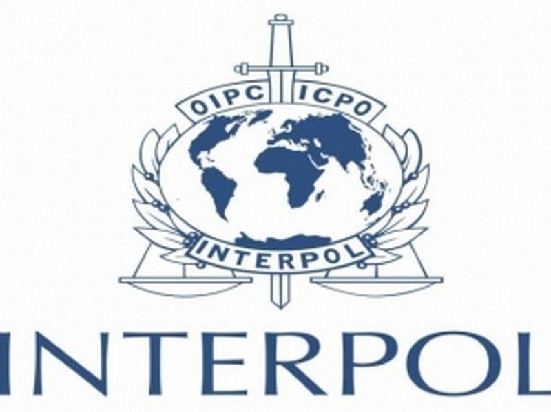 США определились с кандидатом на должность главы Интерпола