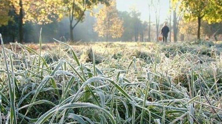В Украину идут заморозки. К нам – тоже