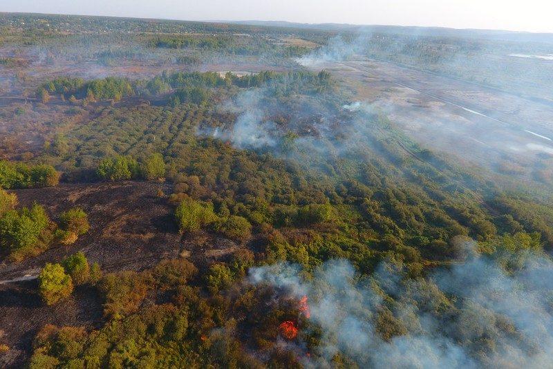 В Украине горят торфяники в пяти областях