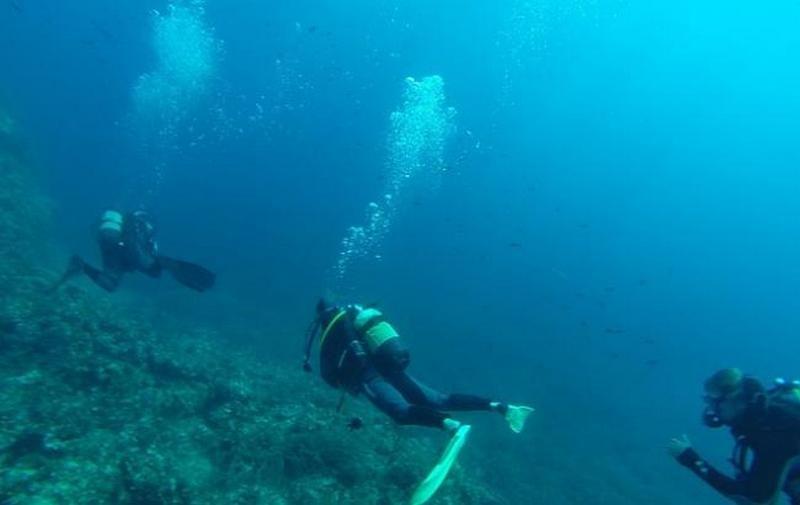 На дне Черного моря нашли десятки древних кораблей