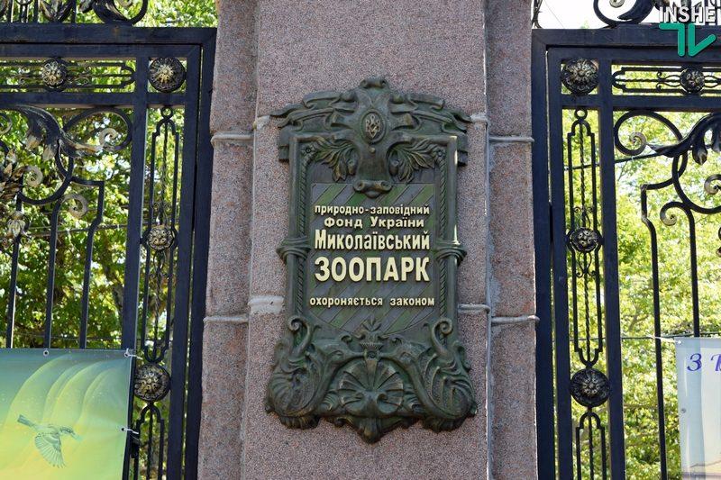 В локдаун Николаевский зоопарк можно будет посетить виртуально (РАСПИСАНИЕ)