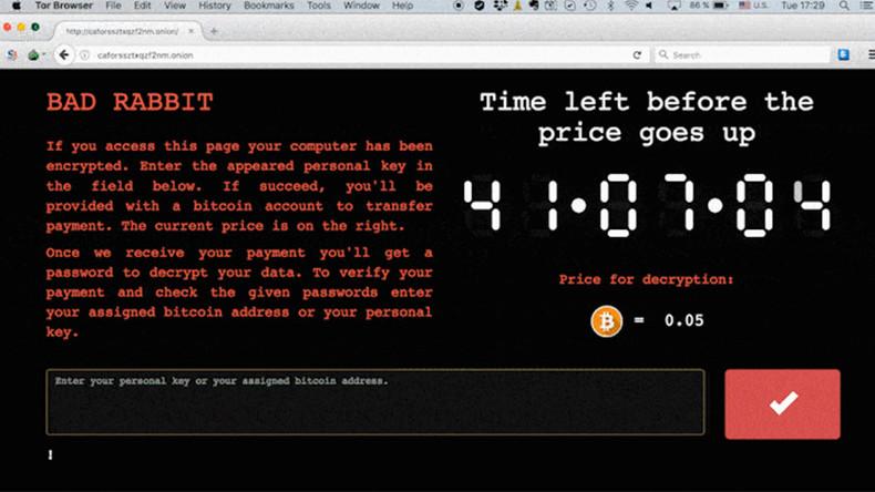 С какого доменного имени пришел новый компьютерный вирус-шифровальщик BadRabbit, уже определили