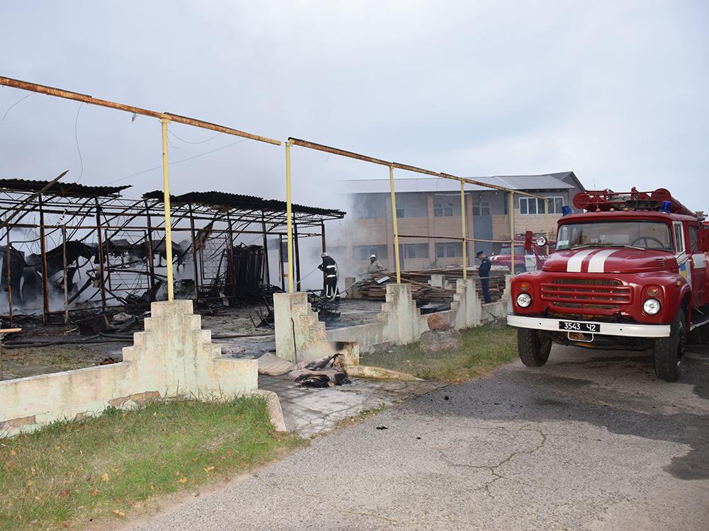 Пылало жарко: в Коблево сгорела хозпостройка с мебелью одной из баз отдыха 11