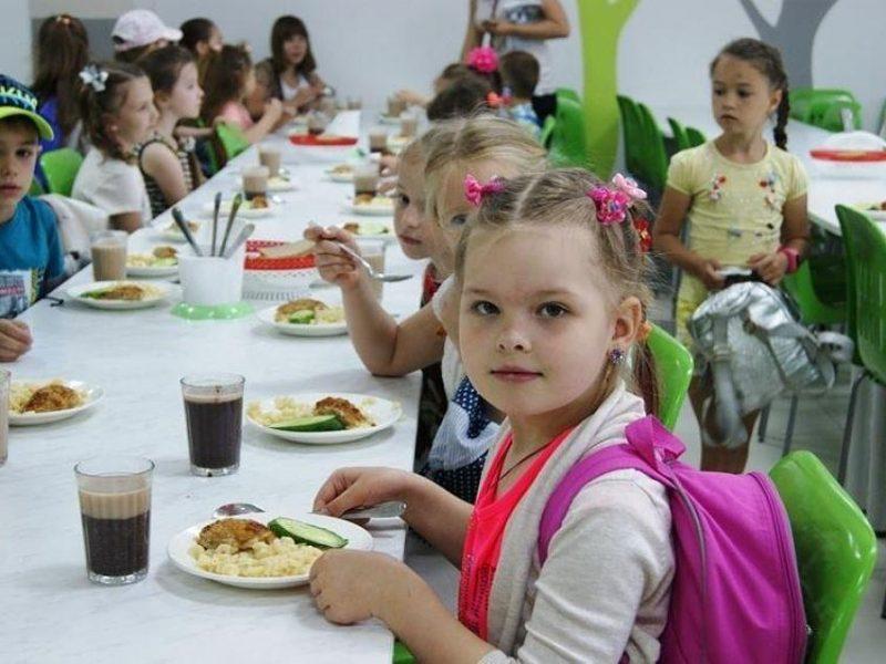 На Николаевщине в сельских детском саду и школе в приготовленной еде нашли кишечную палочку