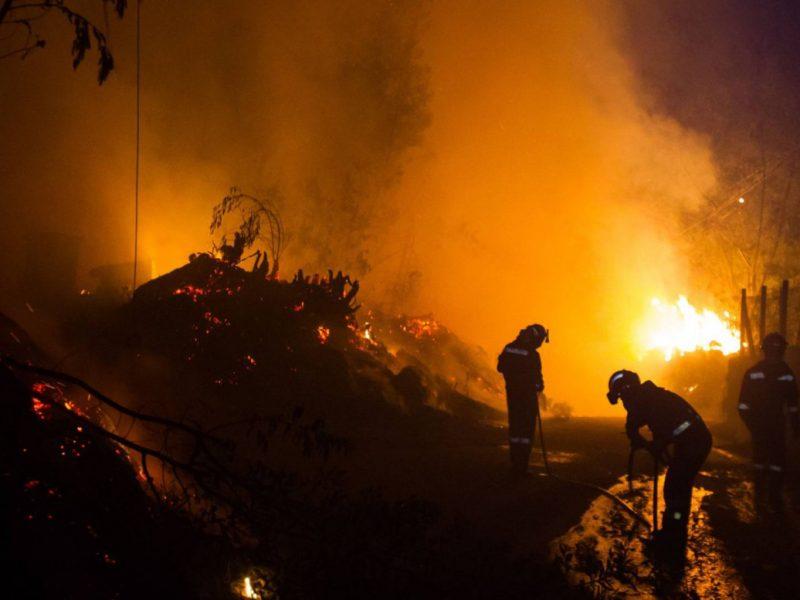 В Очаковском районе чуть не сгорели дачи – спасатели тушили до полуночи
