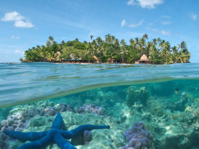 Островное государство Вануату продает гражданство – за биткоины