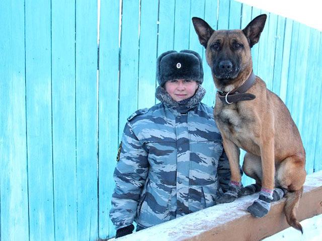 Клонированные собаки заступили наслужбу вУФСИН Якутии