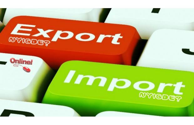 На долю IT-бизнеса приходится меньше 1% всего экспорта услуг Николаевской области